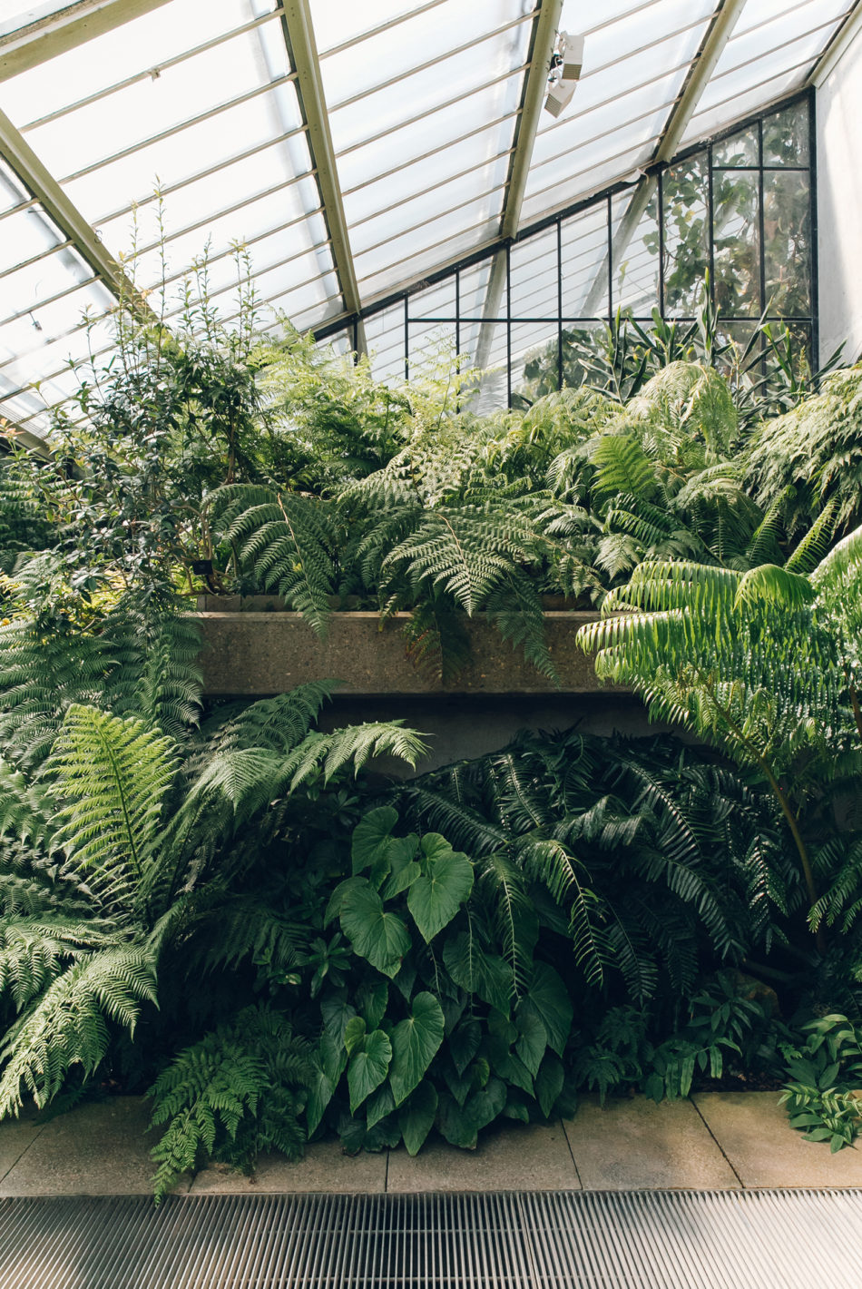 The best plant and garden instagram accounts to follow now haarkon