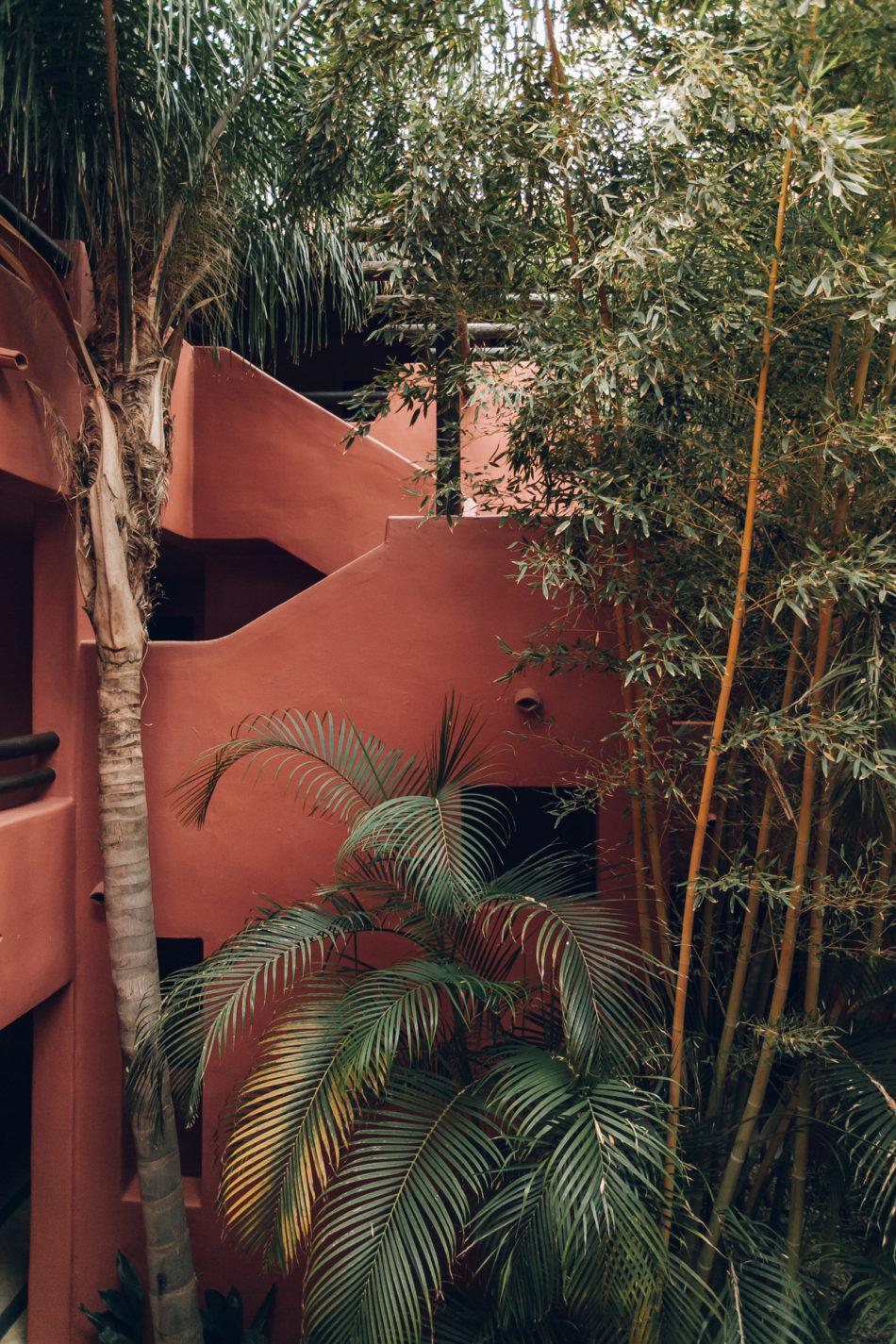 The best plant and garden Instagram accounts to follow now Haarkon