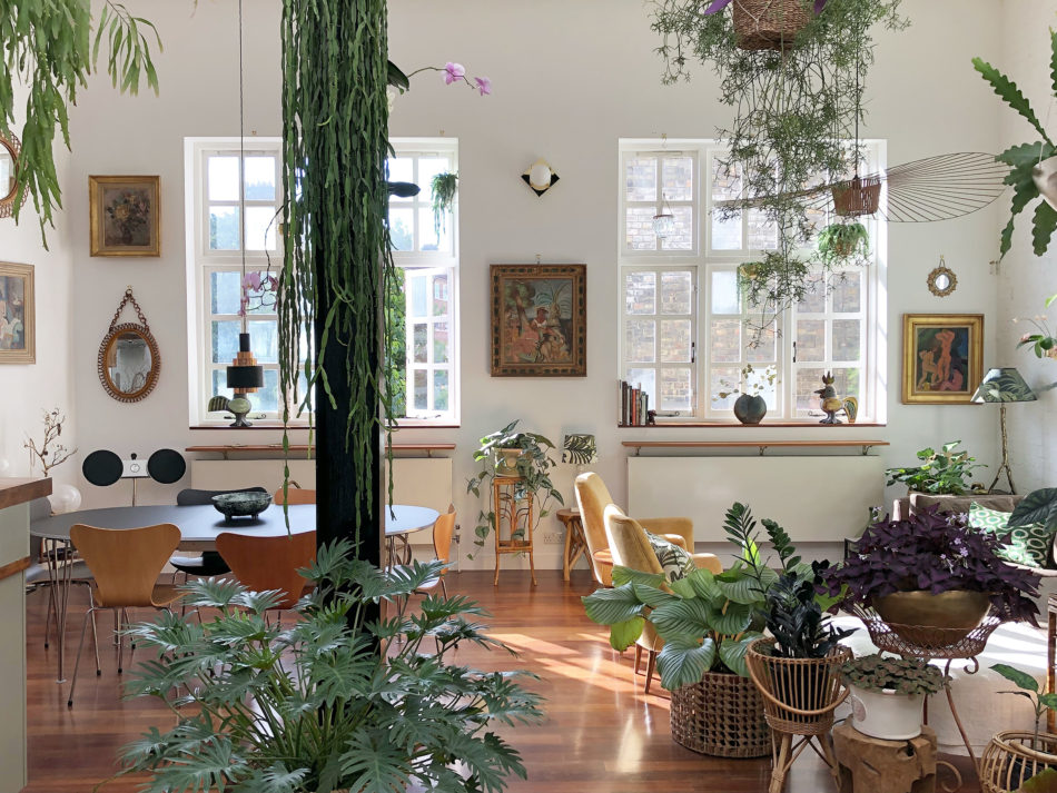 The best plant and garden Instagram accounts to follow now Jamies Jungle