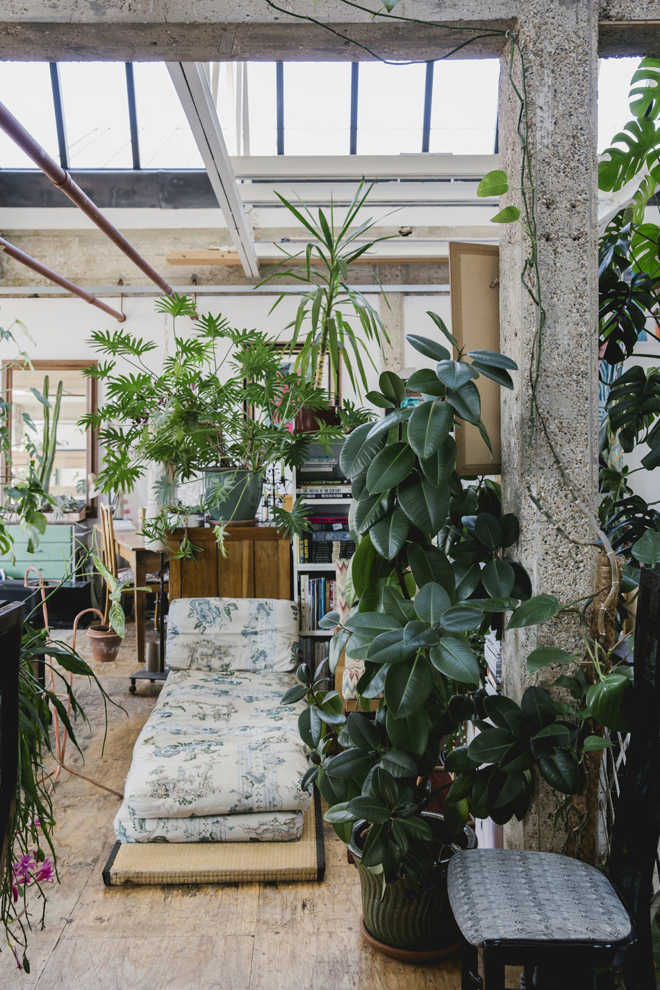 The best plant and garden Instagram accounts to follow now Roco